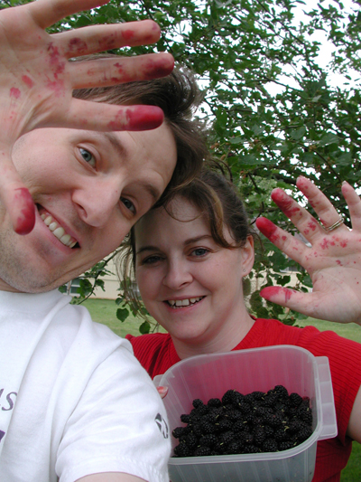 Berry Picking Photo 01