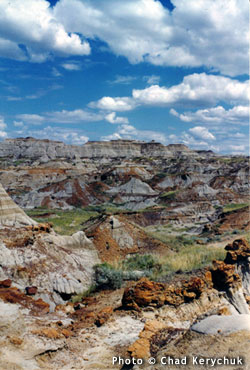 Photo of Dinosaur Provincial Park by Chad Kerychuk.