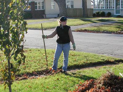 Photo of April Kerychuk raking leaves.