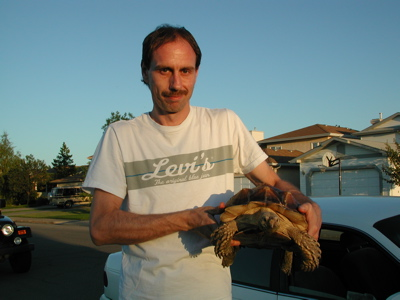 Tortoise Walking Photo 04