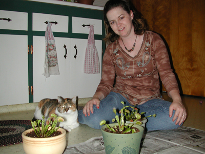Venus Fly Traps photos 01